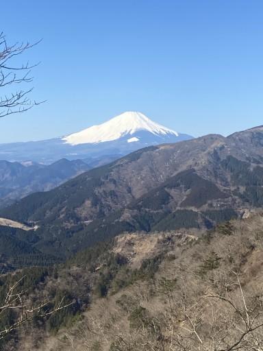 4月3日土曜日登山行きませんか?(御岳山or鍋割山or陣場山