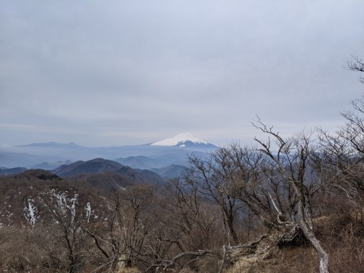 4/25(日)登山行きませんか?