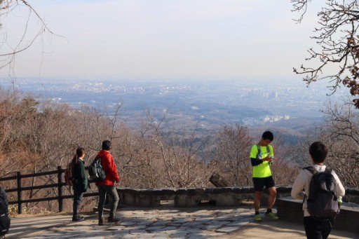 一緒に高尾山へ登りませんか